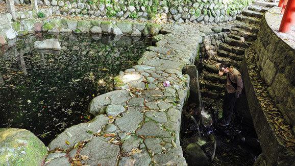 《日本熊野古道 鲜为人知的朝圣之路》