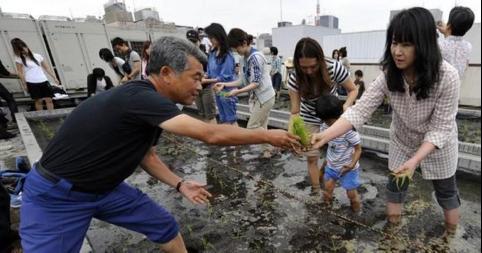 《日本人民与雾霾40年的战斗史》