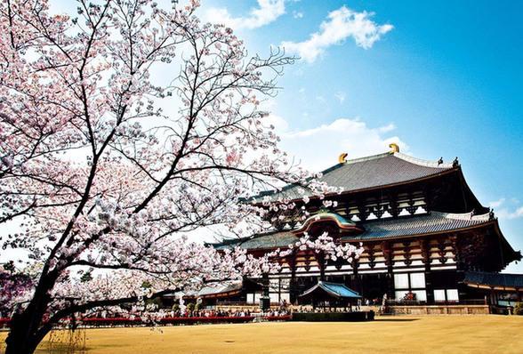 《日本的行政区划-奈良(なら)》