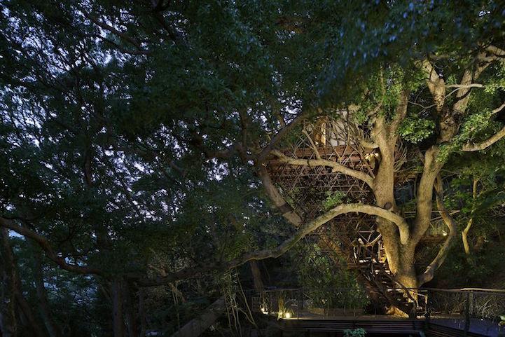 《栖息在300岁古树上的日本最大树屋 JAPAN'S LARGEST TREEHOUSE BY TAKASHI KOBAYASHI》