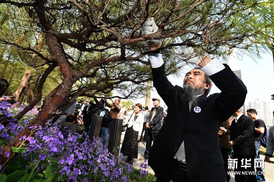 《日本访华团南京悼念 友谊树已种万棵》