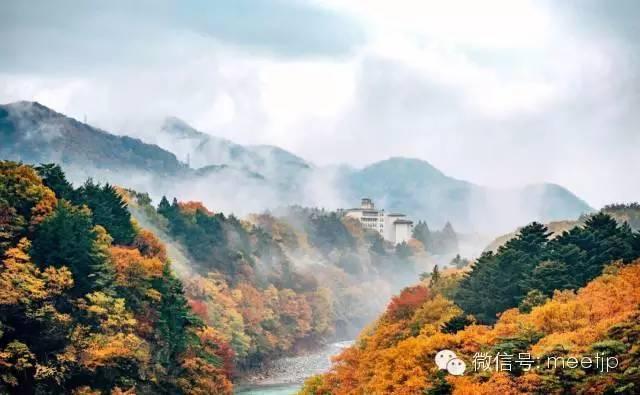 《东京周边直达2h内,日本人都不知道的绝美小镇》