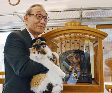 《日本举行猫咪站长浮雕揭幕式 新猫站长祝福》