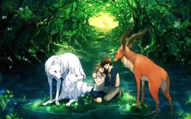《屋久岛,让宫崎骏都倾心的千年森林》