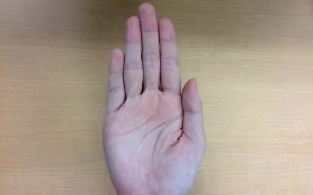 《日本人也玩: 伸出手就能知道你是哪种人》