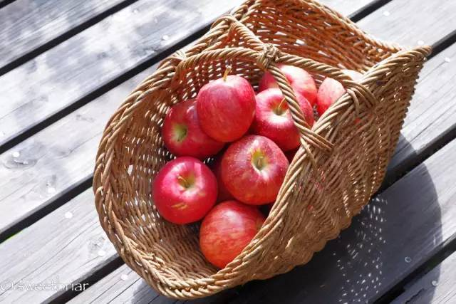 《青森县不只有苹果,还有人气的传统工艺品!》
